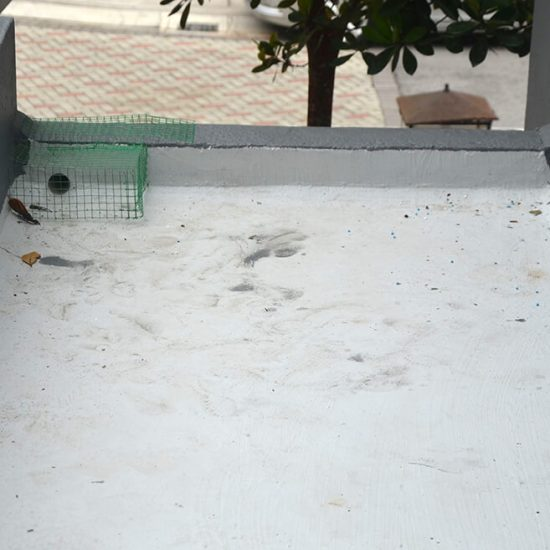 Condition Of Rooftop Before Nano-G's Waterproofing Services