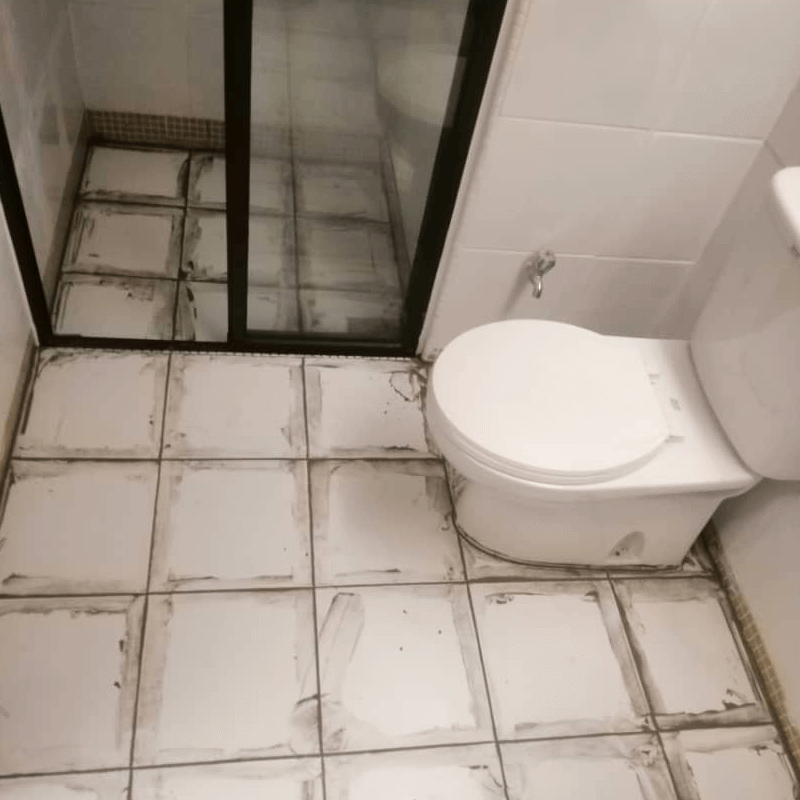 Condition Of Bathroom Before Nano-G's Services