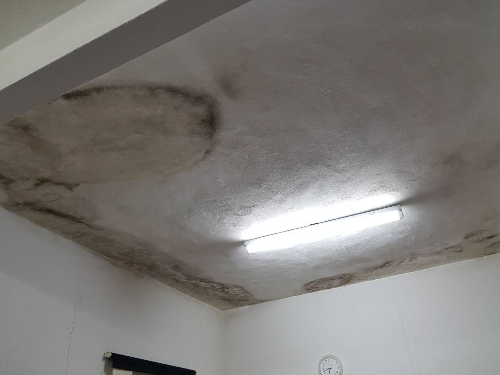 A water leaking issue from the upstairs bathroom has caused the ceiling to grow black mould and dark stains.